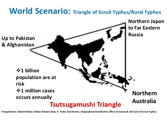 Epidemiology of Scrub Typhus