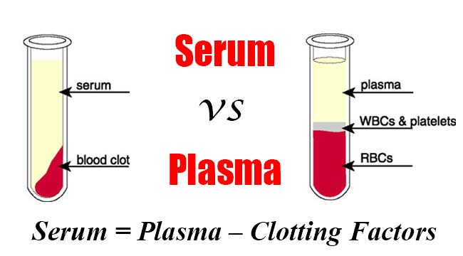 Difference between Serum and Plasma